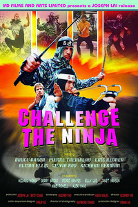 Bild Challenge of the Ninja