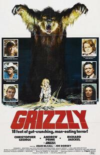 Bild Grizzly