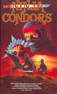 Bild Ninjas, Condors 13