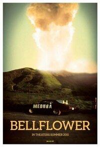 Bild Bellflower