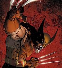 image Logan / Wolverine