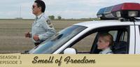 Bild Smell of Freedom