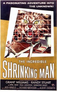 Bild The Incredible Shrinking Man