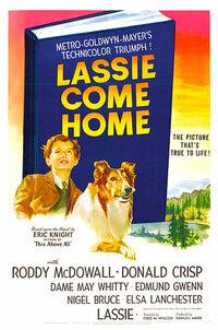 Bild Lassie Come Home