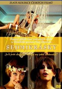 Bild Sedmikrásky