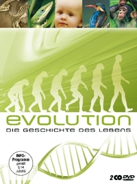 Bild Evolution