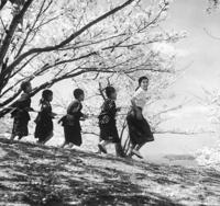 Bild Nijûshi no hitomi