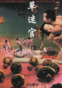 Bild Kusa-meikyû