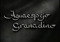 Bild Aguaespejo granadino