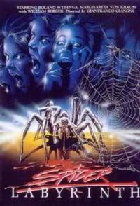 Bild Il nido del ragno