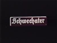 Bild Schwechater