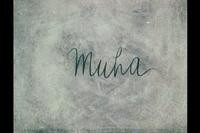 Bild Muha