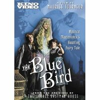 Bild The Blue Bird