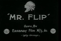 Bild Mr. Flip