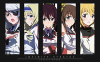 Bild Infinite Stratos
