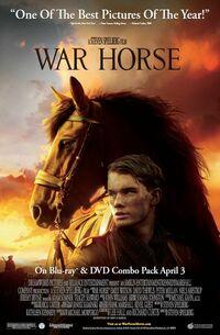 Bild War Horse