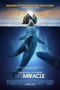 Bild Big Miracle