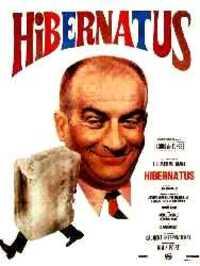 Bild Hibernatus
