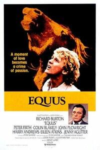Bild Equus