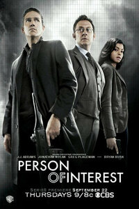 Bild Person of Interest
