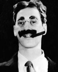 Bild Groucho Marx