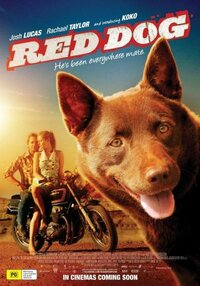 Bild Red Dog