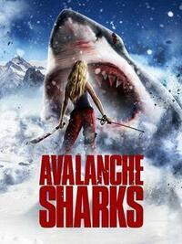 Bild Avalanche Sharks