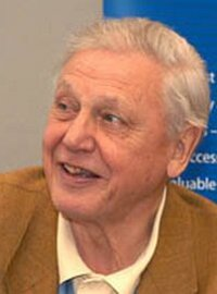 Bild David Attenborough