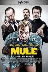 Bild The Mule