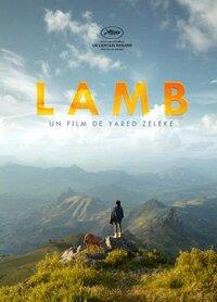 Bild Lamb