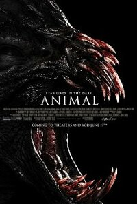 Bild Animal