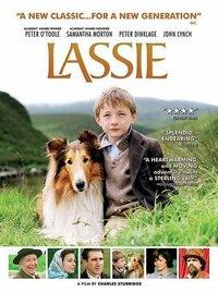 Bild Lassie