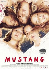 Imagen Mustang