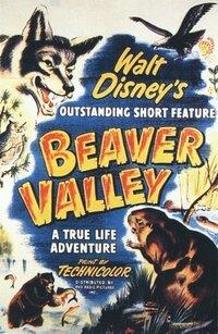 Bild Beaver Valley
