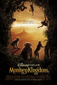 Bild Monkey Kingdom