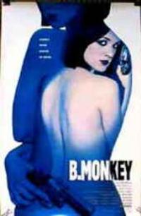 Bild B. Monkey