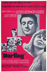 Bild Darling