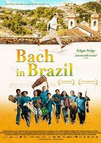 Bild Bach in Brazil