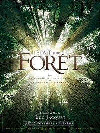 Bild Il était une forêt