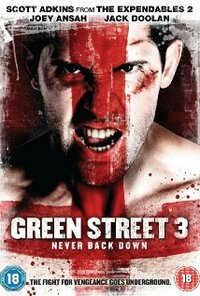 Bild Green Street 3: Never Back Down