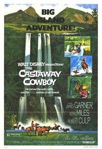 Bild The Castaway Cowboy