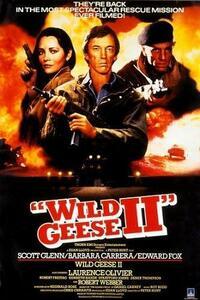 Bild Wild Geese II