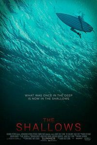 Bild The Shallows