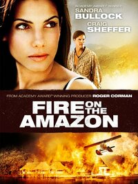 Bild Fire on the Amazon