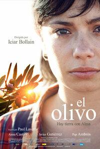 Bild El olivo