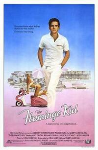 image The Flamingo Kid