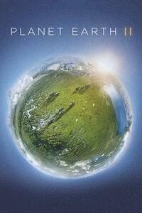 Bild Planet Earth II