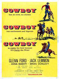 Bild Cowboy