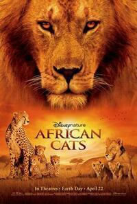 Bild African Cats