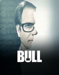 Bild Bull